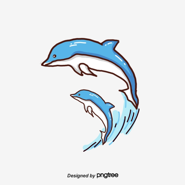 Dolphin Png, Vector, PSD, and Clipart With Transparent Background.