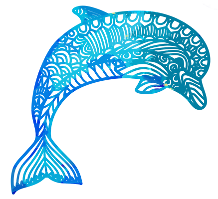 Dolphin PNG Free Download.
