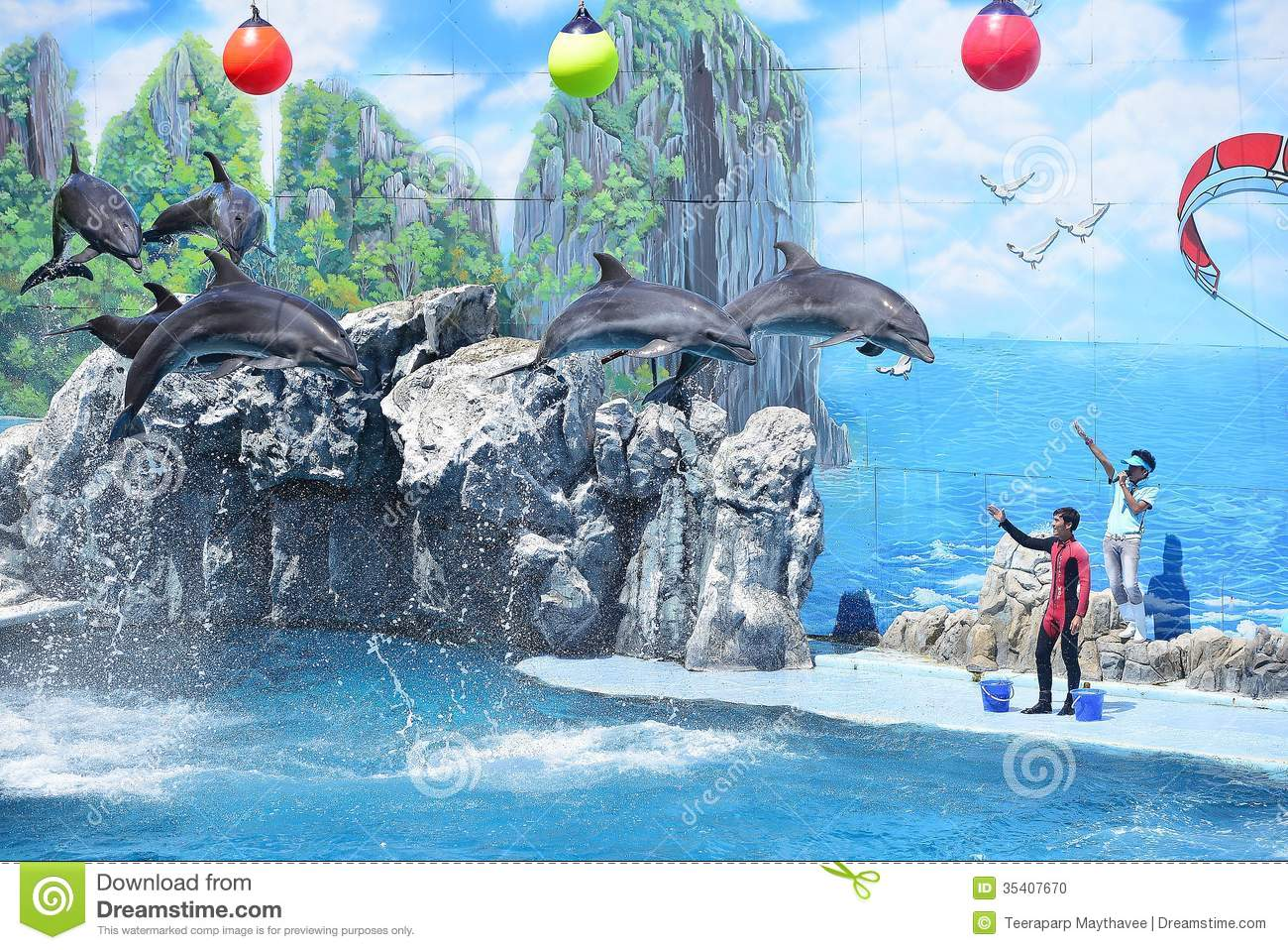 Dolphin show clipart #5