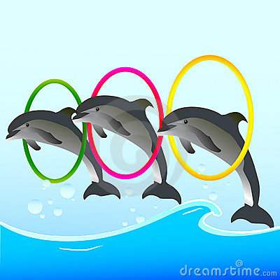 Gallery For > Clipart Dolphin Show.
