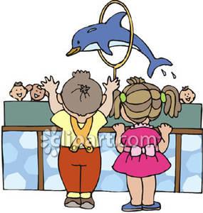 Watching a Dolphin Jump Through a Hoop.