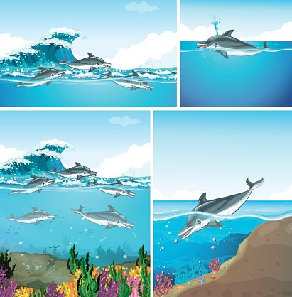 Dolphins swimming in the ocean Clipart Image.