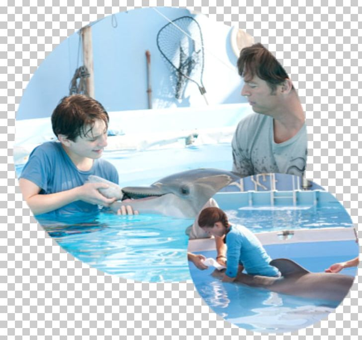 Clearwater Marine Aquarium Dr. Clay Haskett Film Dolphin Tale PNG.