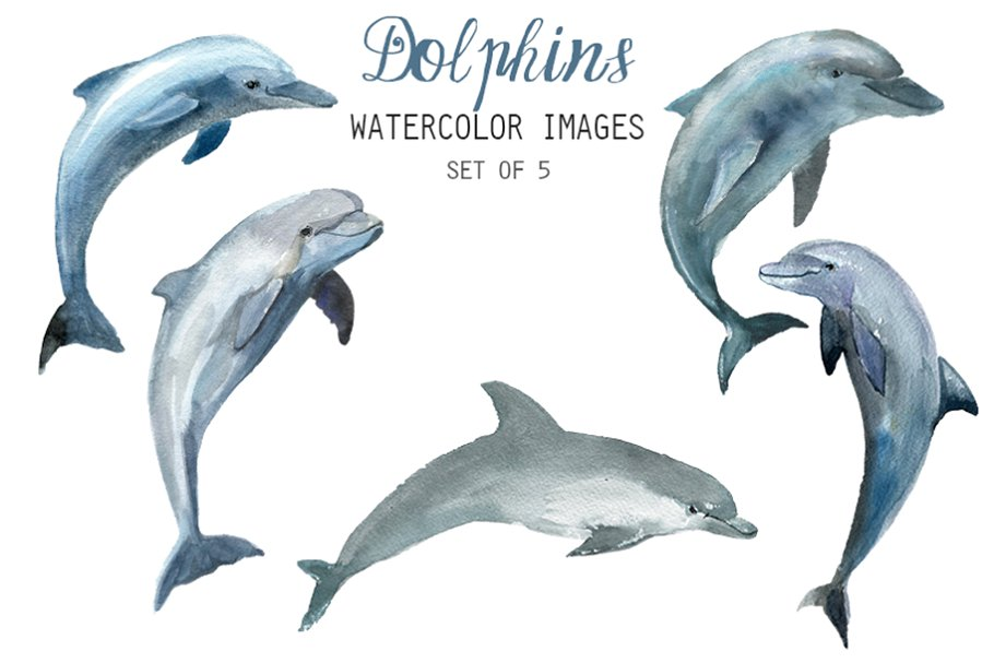 Watercolor Dolphins Clipart.