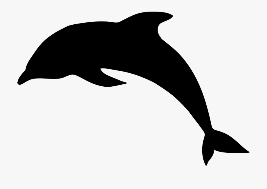 Dolphin Clipart Black And White Dolphin Clipart Black.