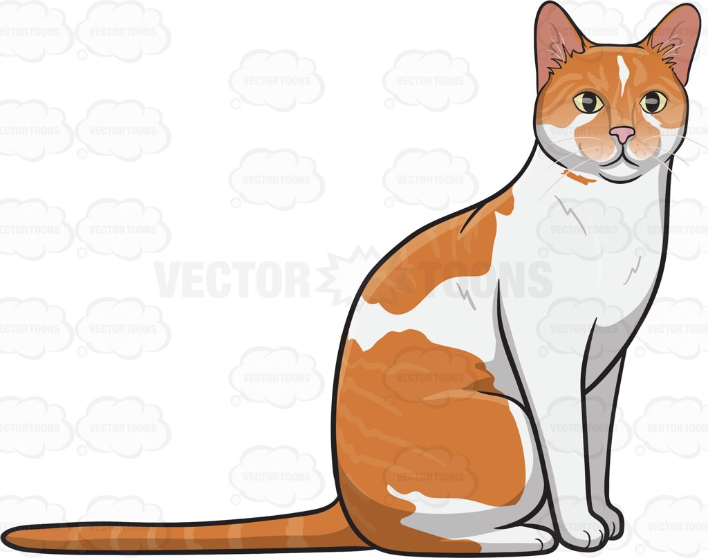 A Pretty Domestic Cat Cartoon Clipart.