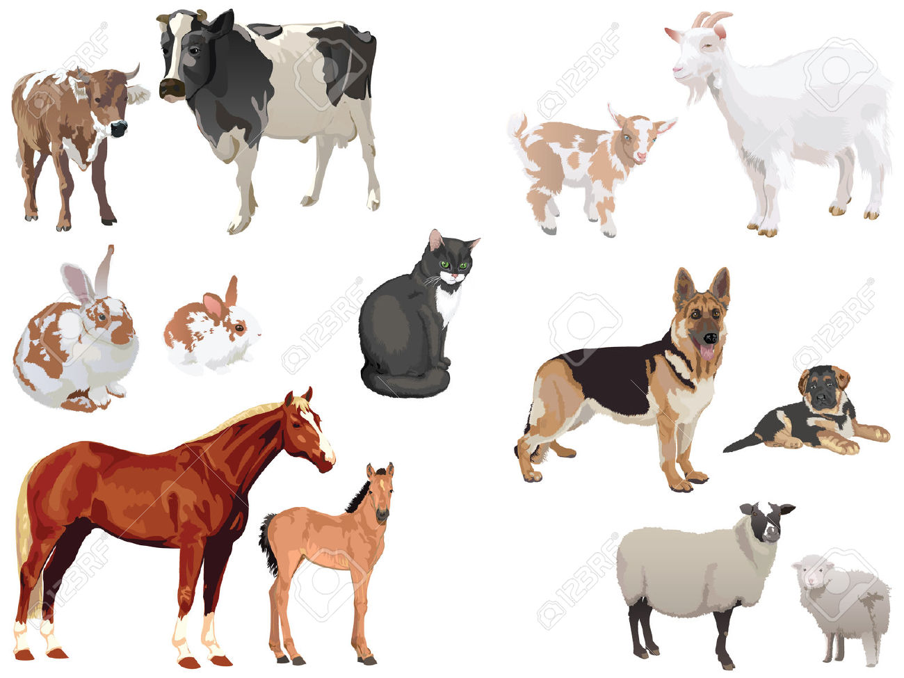 Clipart Set Of Domestic Animals With Cubs Royalty Free Cliparts.