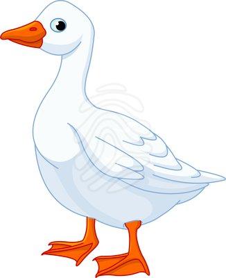 Clip art: White domestic goose.