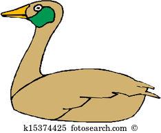 Domestic goose Clip Art Vector Graphics. 496 domestic goose EPS.