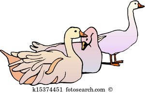 Domestic goose clipart #19