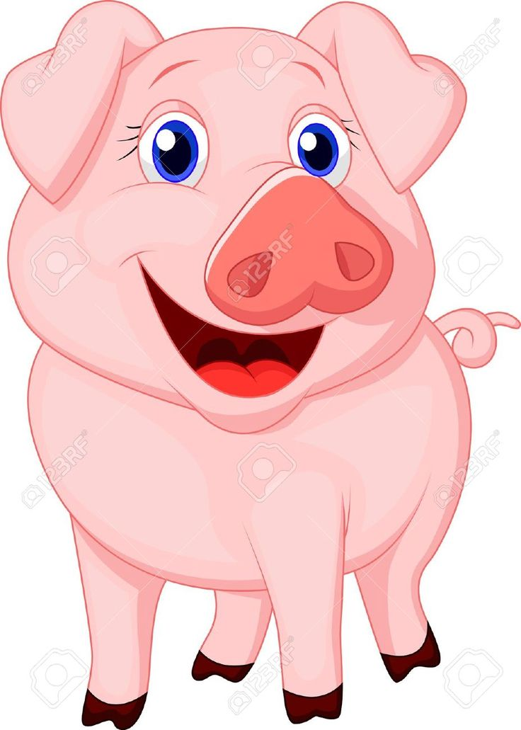 1000+ images about Pig on Pinterest.