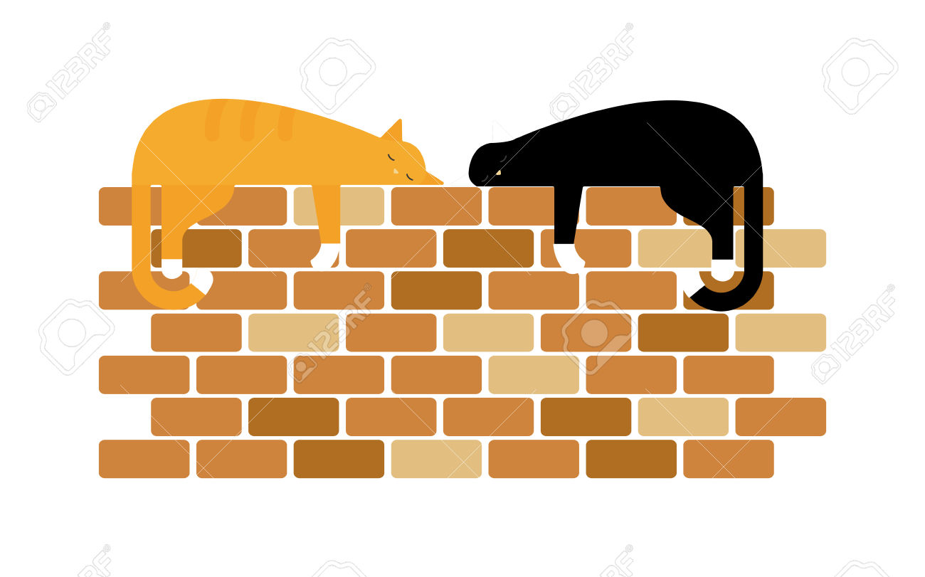 Two Cute Domestic Short Hair Cats Sleeping Snuggle On Wall. Two.