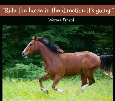 1000+ images about Horse quotes on Pinterest.