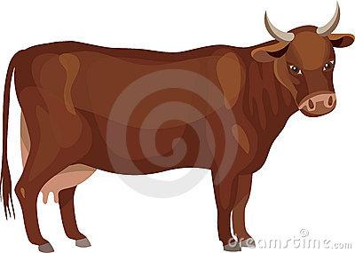 Caw Stock Illustrations.