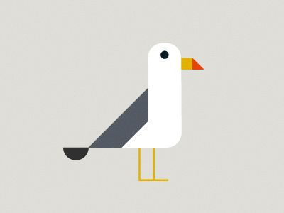 1000+ images about B e a c h : Seagulls on Pinterest.