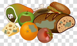 Don\'t waste food text transparent background PNG clipart.