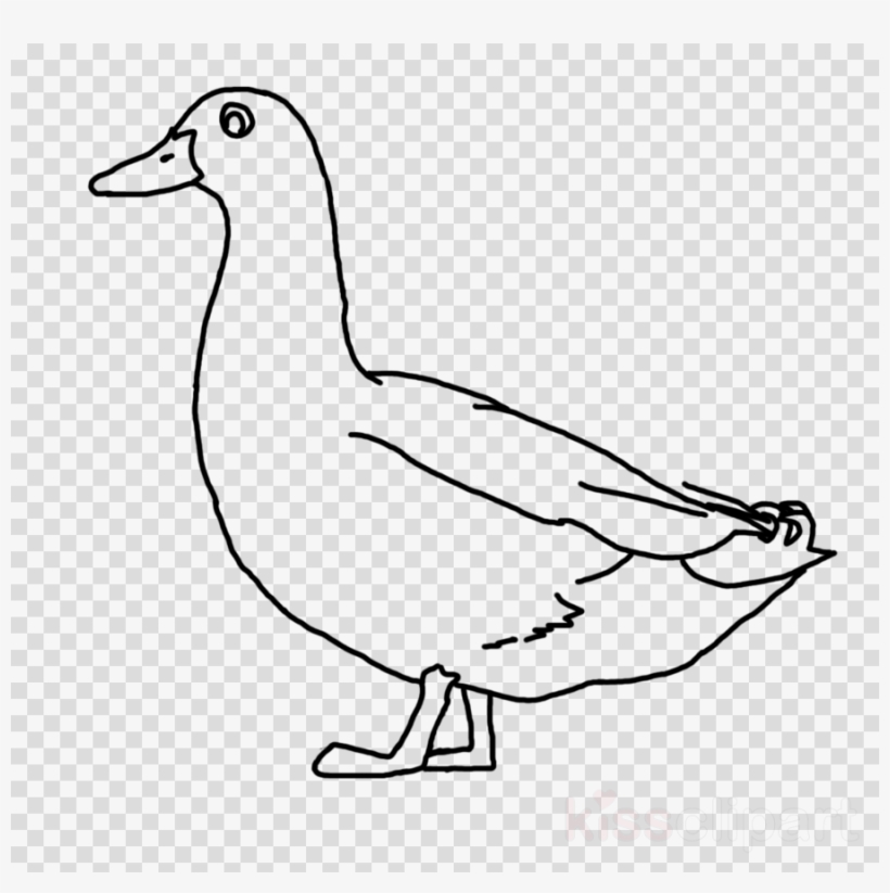 Duck Drawing Pic Png Clipart Donald Duck Line Art.
