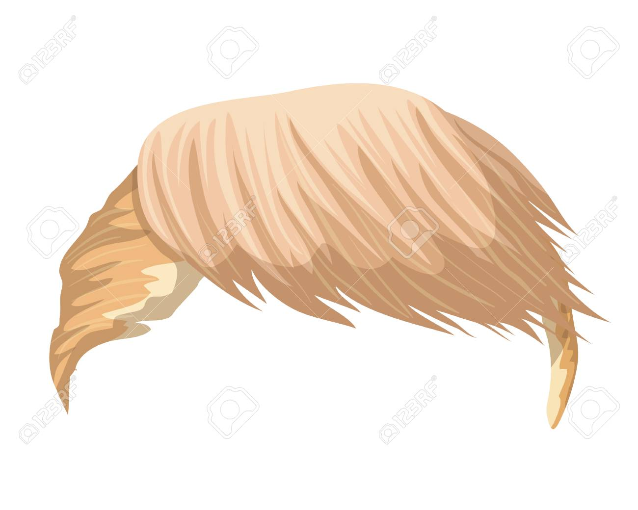 Hair Donald Trump. Leader of USA. Can use for caricatures and...