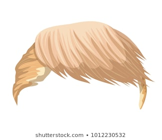 Trumps Hair Png (111+ images in Collection) Page 1.