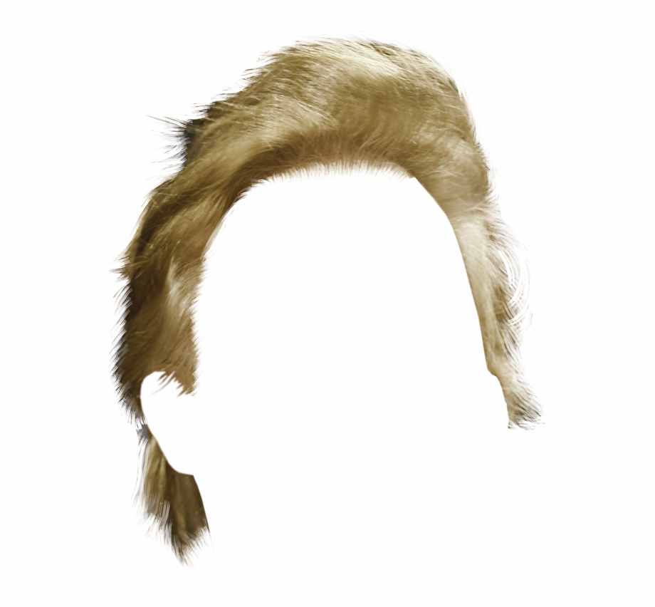 Transparent Donald Trumps Hair, Transparent Png Download For Free.