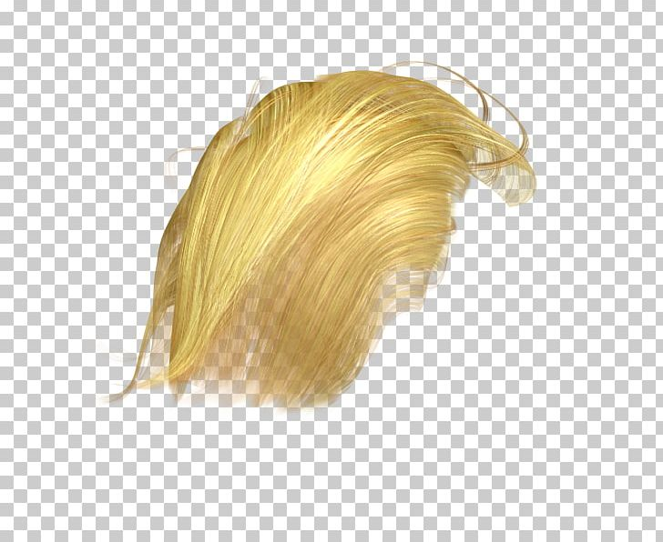 Wig Hair PNG, Clipart, 3d Computer Graphics, Blond, Donald Trump.