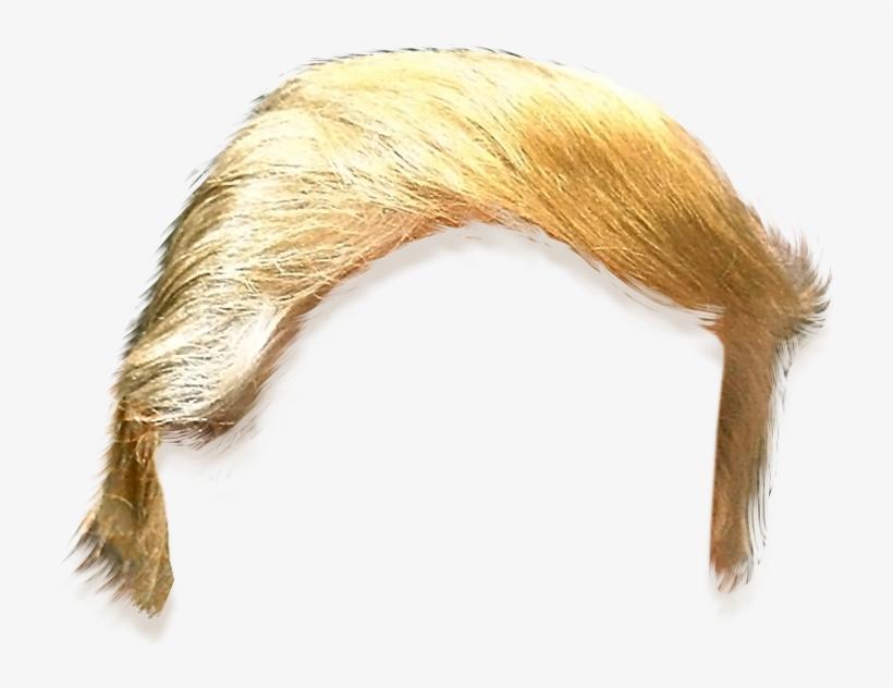 Donald Trump Hair Png (+).