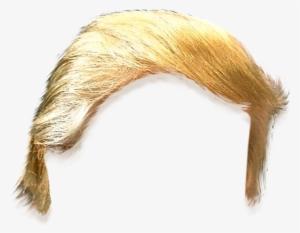 Donald Trump Hair PNG, Transparent Donald Trump Hair PNG.