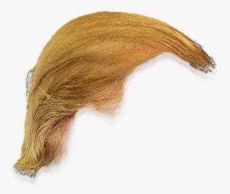Trump Hair PNG Images, Free Transparent Trump Hair Download.