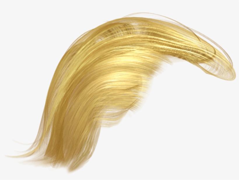 Trump's Hair Png.