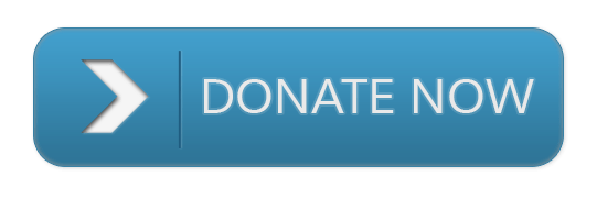 Donate Now Button transparent PNG.