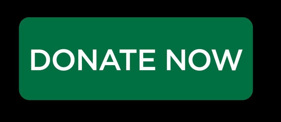 donate now 2.