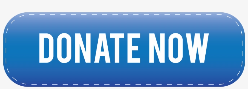 Blue Donate Now Button.
