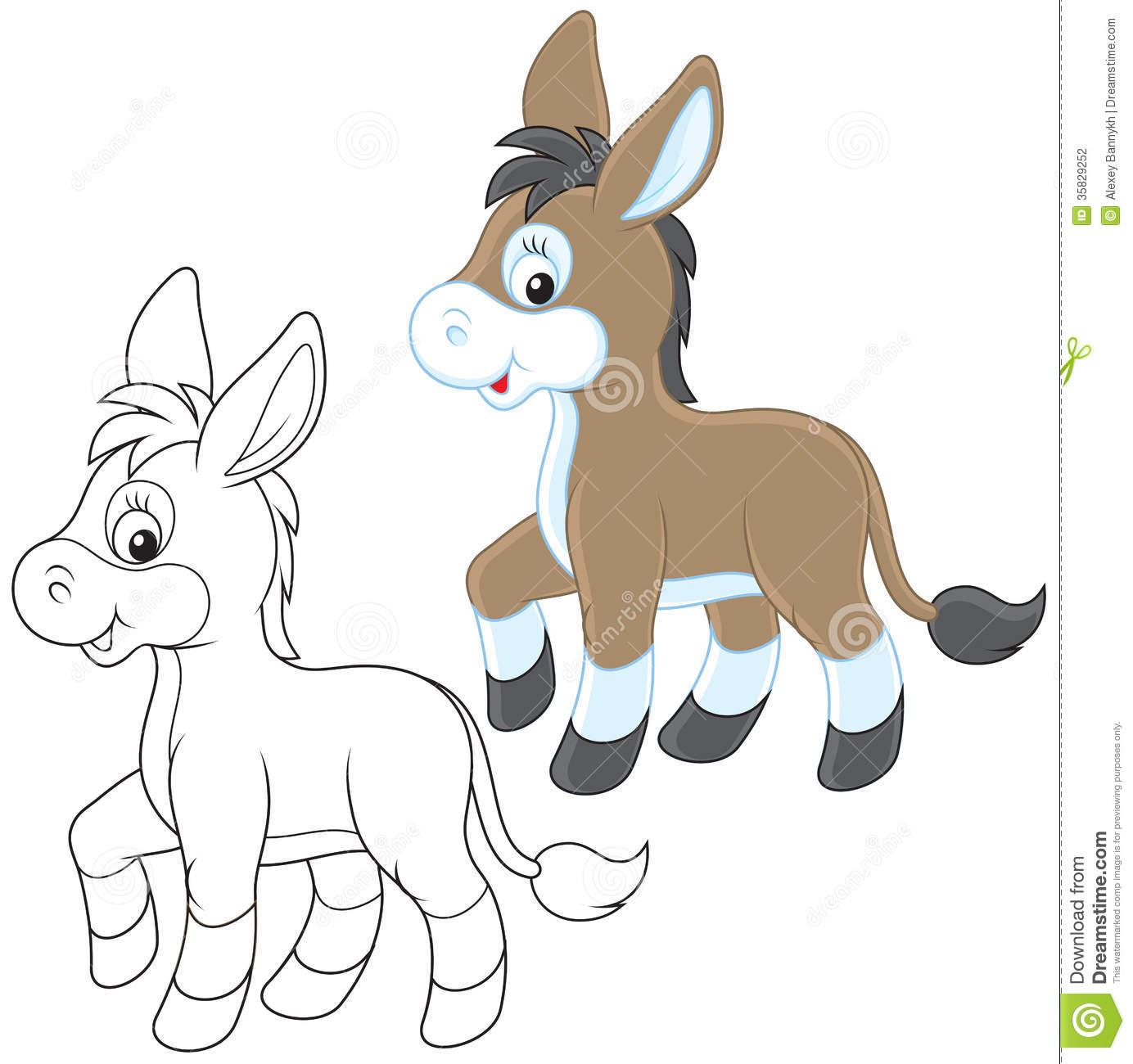 Donkey Stock Photography.