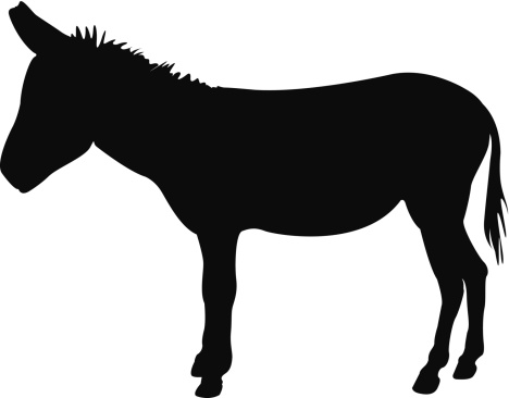 SILHOUETTE OF DONKEY.