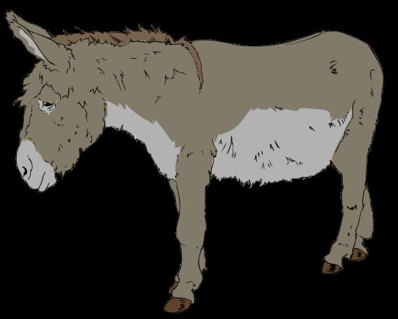 File:Donkey clipart 01.svg.