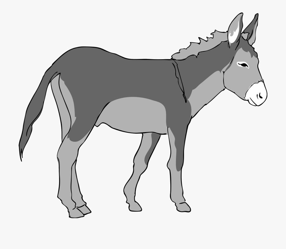 Donkey Clipart , Transparent Cartoon, Free Cliparts.