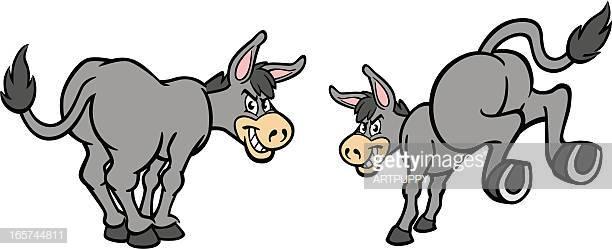 60 Top Donkey Stock Illustrations, Clip art, Cartoons, & Icons.