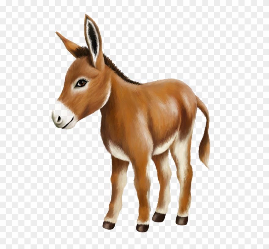 Donkey Png Image Hd.