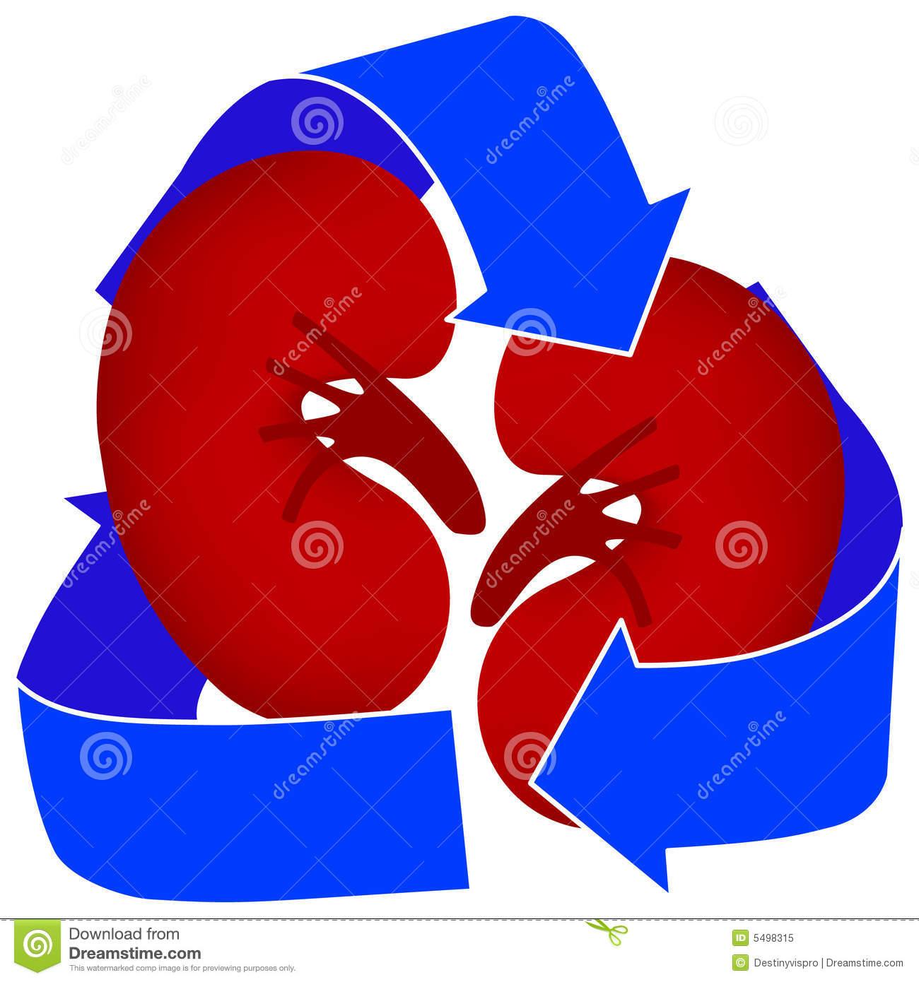 Organ donor clipart.