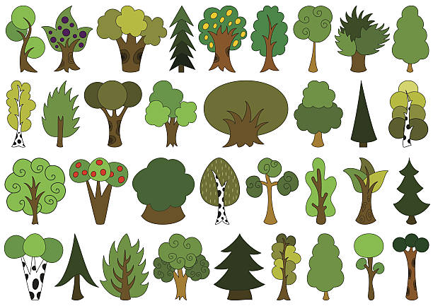 Mangrove Forest Clip Art, Vector Images & Illustrations.