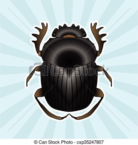 Vector Clipart of Insect anatomy. Sticker Geotrupidae dor.