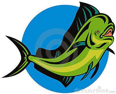 Dorado Dolphin Fish Royalty Free Stock Photos.