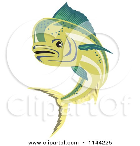 Clipart of a Dorado Dolphin Fish Skeleton and Crossed Spears in a.