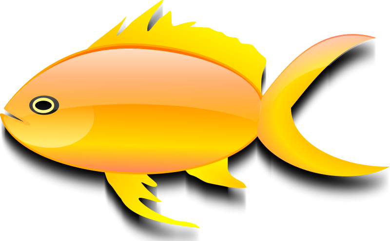 Free Clipart: Pez dorado (gold fish).