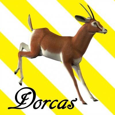 1000+ images about Dorcas on Pinterest.