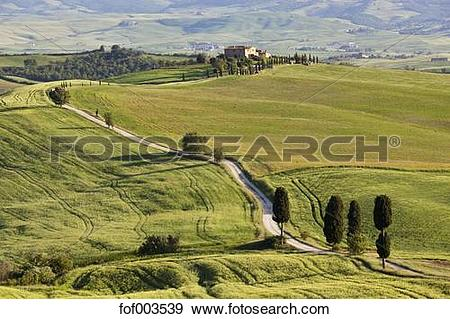 Stock Photograph of Italy, Tuscany, Val d'Orcia, View of hilly.