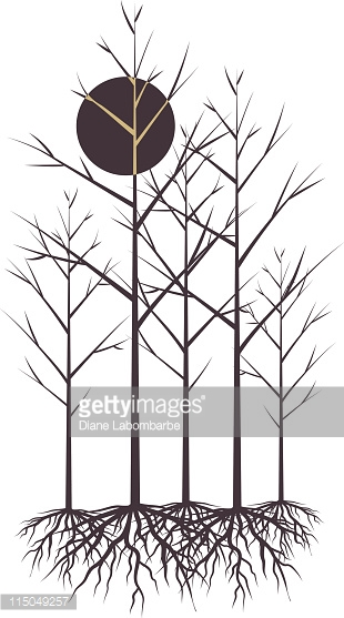 Dormant Trees Clip Art Stock Illustrations And Cartoons.