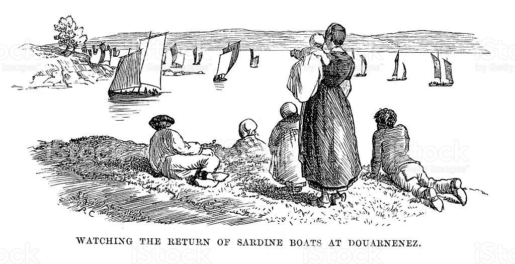 Sardine Boats At Douarnenez stock vector art 183800528.