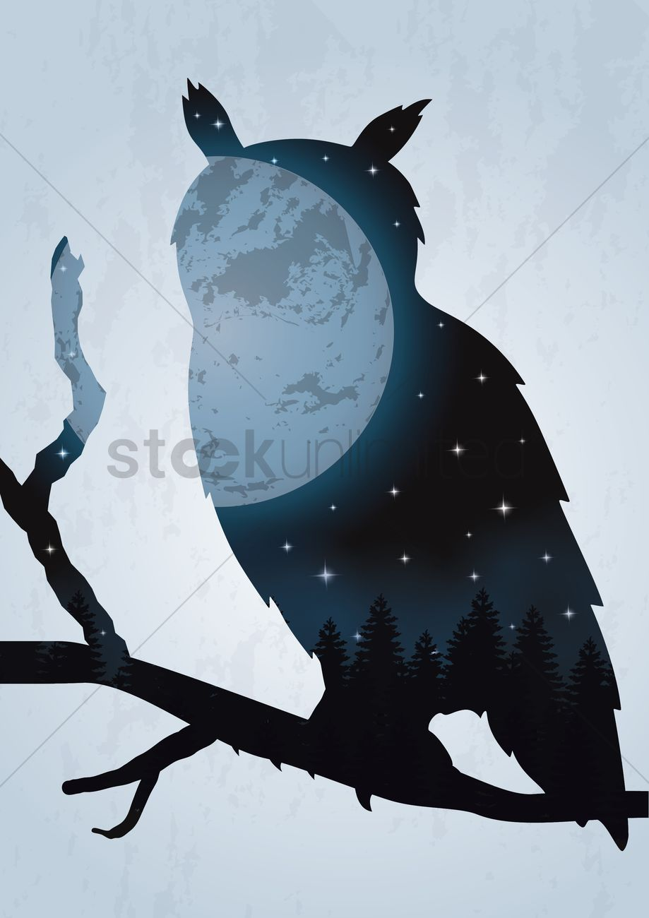 Double exposure owl and night sky Vector Image.