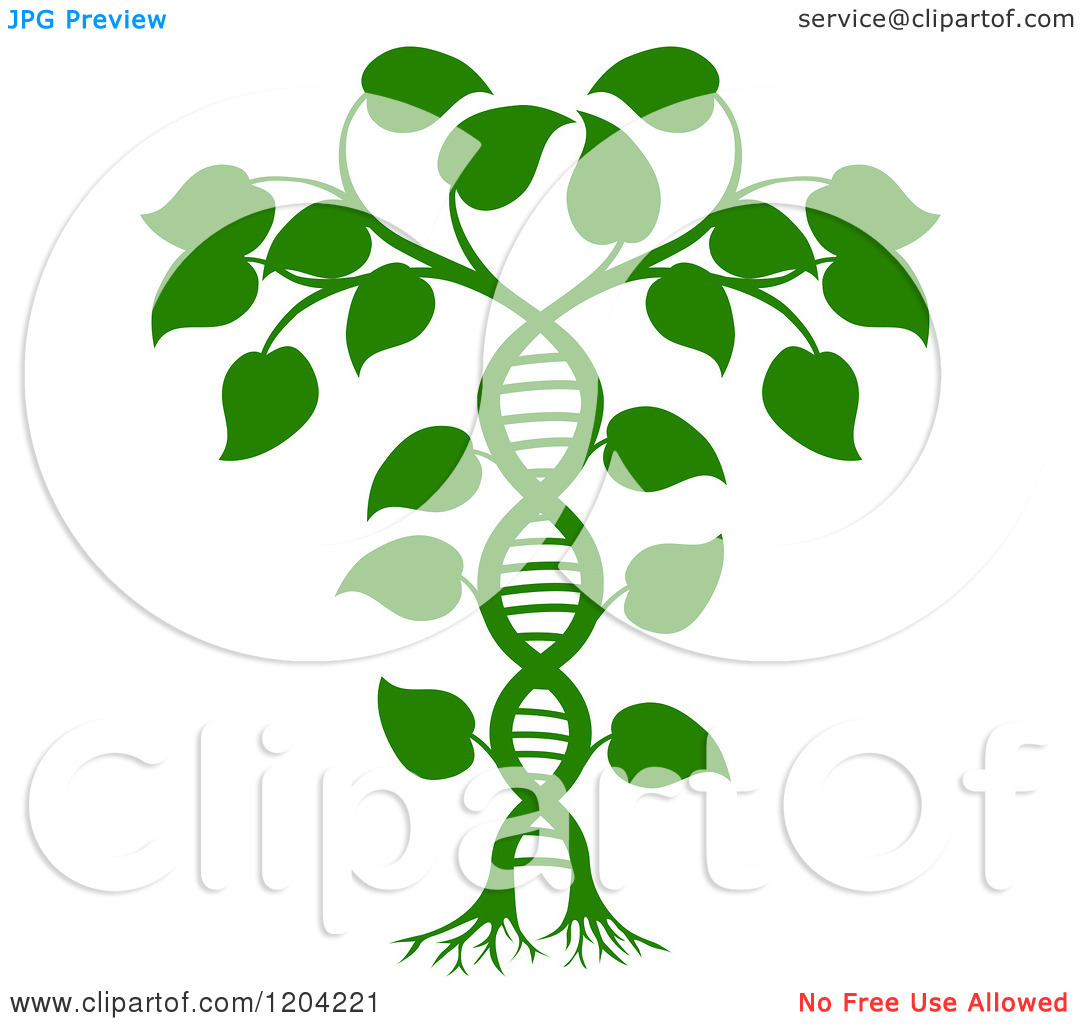 Cartoon of a Green DNA Double Helix Plant.